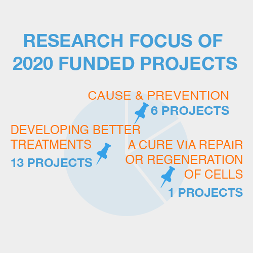 Research Focus of 2020 Funded Projects